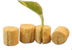 画像3: ロックウール培地 グロダン キエムプラグ 240個〔専用トレー付〕Grodan Kiemplug 育苗培地