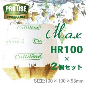 画像2: Cultilene ロックウール ブロック MAX HR100×2個セット 100×100×98mm カルチレン社