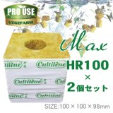 Cultilene ロックウール ブロック MAX HR100×2個セット 100×100×98mm カルチレン社